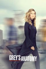 regarder Grey's Anatomy - Saison 16 en Streaming